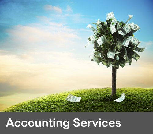 accounting services premier bookkeeping solutions in CT